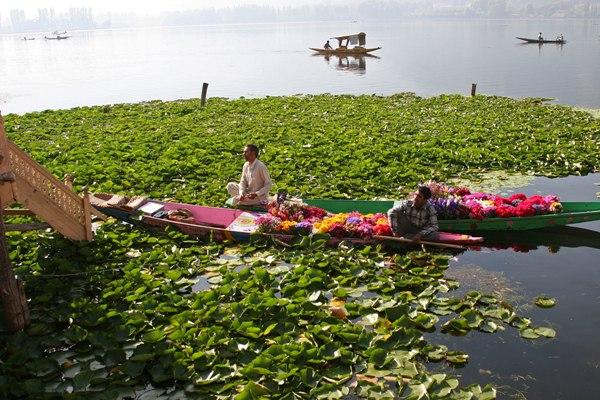 Flower sellers on Dal Lake Srinagar