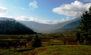 Best of Nepal & Bhutan Tour